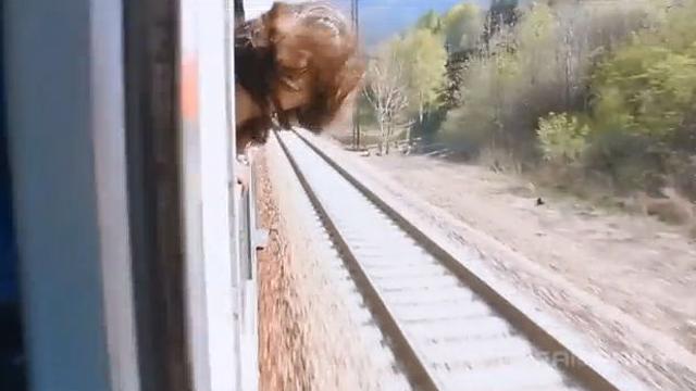 기차에서 이런 행동은 금물