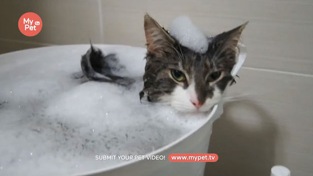 목욕이 시원하신 어르신