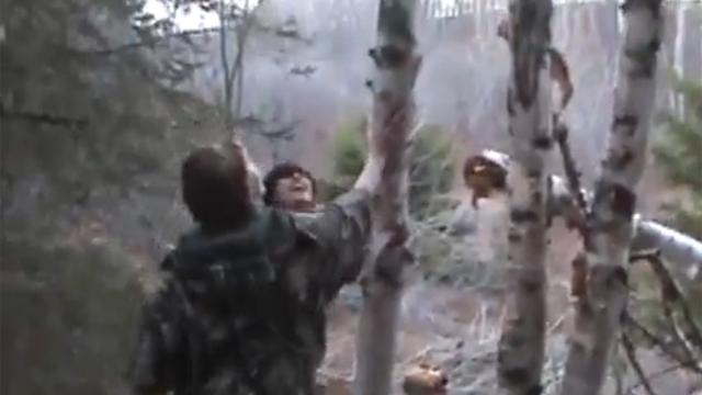 나무를 자르다 방심한 순간, 헐