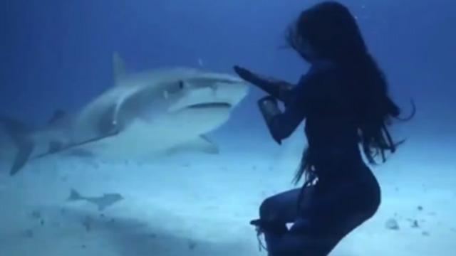 상어도 무섭지 않은 바다의 여신