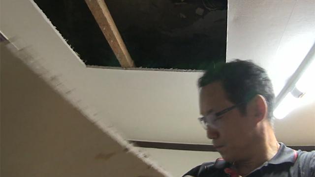 천장 위 미스터리한 소음의 정체