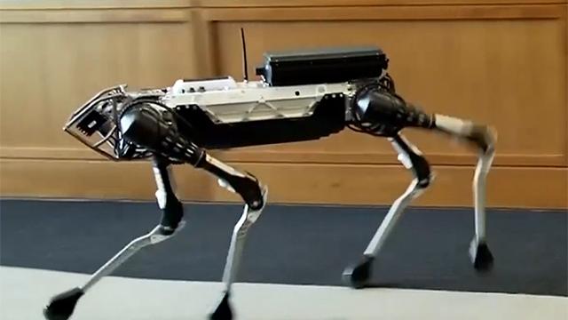 알파고의 형제 로봇 강아지