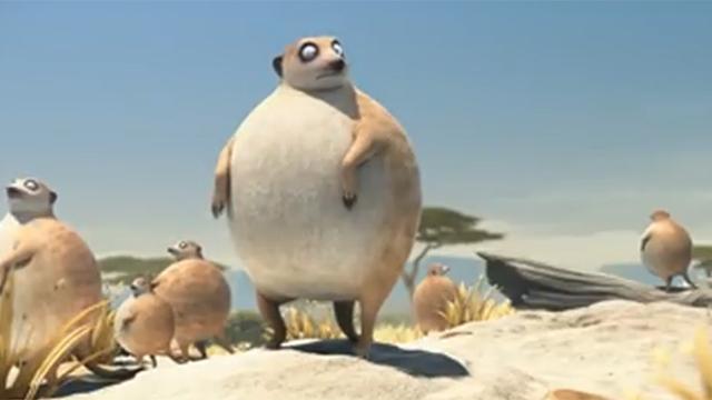 동물들이 만약에 뚱뚱하다면?