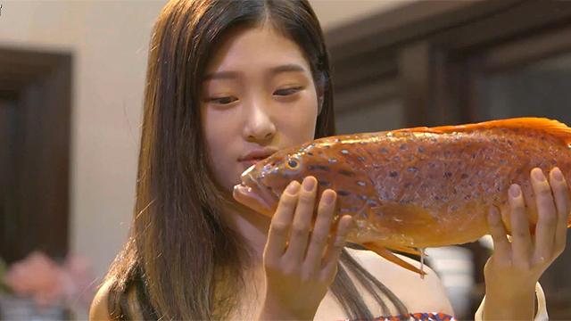 생선을 마주한 아이돌 반응
