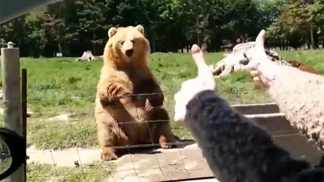 딱히 빵 때문에 인사한 건 아냐