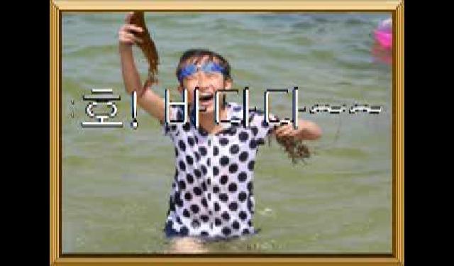 2011년 고성 삼포해수욕장